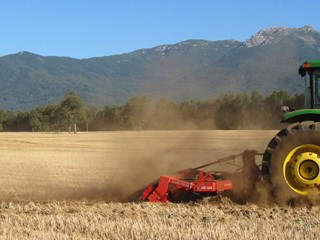 HE-VA-Sub-Tiller-in-stubble-field-in-Chile.jpg